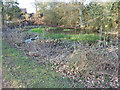 SP9307 : Pond at Shirelane Farm by Rob Farrow