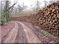 SP0214 : Foresters have been hard at work by Terry Jacombs