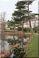 TQ8110 : Pond in Alexandra Park by Oast House Archive
