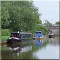 SJ7658 : Trent and Mersey Canal at Malkin's Bank, Cheshire by Roger  Kidd