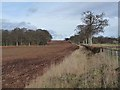 NO3052 : Ploughed field alongside a country road at Brae of Airlie by Oliver Dixon