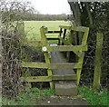 SP6913 : Footbridge over a brook by Graham Horn