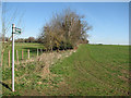 TL4264 : Bridleway to Gun's Lane and Rampton Drift by John Sutton