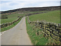 SE6797 : Lane in Farndale by Pauline Eccles