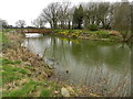 SJ9387 : Moat at Broadoak Farm by Peter Barr