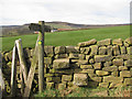 SE6796 : Stone step stile at Bitchagreen by Pauline Eccles