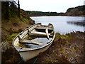 NS0123 : Small boat at Loch Garbad : Week 12