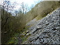 SK1374 : Scree slope by the Monk's Dale footpath by Andrew Hill