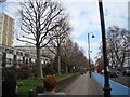 TQ2877 : Line of trees and lamp posts on the Embankment by Robert Lamb