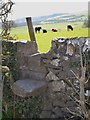 SK1970 : Limestone stile leading off Pennyunk Lane by Neil Theasby