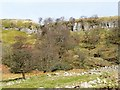 NY9100 : Scar at West Arn Gill by Christine Johnstone
