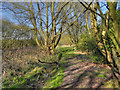 SD6300 : Footpath at the end of Heath Lane by David Dixon