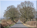 SO7691 : Straight road to Barnsley, Shropshire by Roger  Kidd