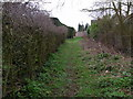 SO9257 : Path between houses and gardens,  Sale Green by Liz Stone