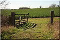 SP7481 : Farmland off the Brampton Valley Way by Richard Croft