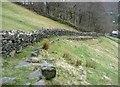 SD9923 : Footpath on a stone terrace near Swan Bank : Week 14