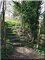 TL9736 : Footpath Steps by Keith Evans