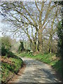 TL9735 : Country Lane by Keith Evans