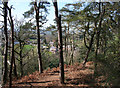 SJ5156 : View towards Burwardsley from Willow Hill by Espresso Addict