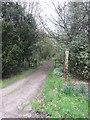 SJ6779 : Estate road, Arley by Richard Webb