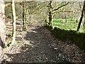 SE0320 : Ripponden Footpath 14, Soyland by Humphrey Bolton