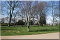 TQ2906 : Trees in Hove Recreation ground by Paul Gillett