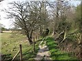 TQ7324 : Footpath along the River Rother by Oast House Archive