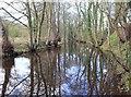 SK3089 : River Loxley near Rowel Bridge by David P Howard