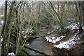 TQ5927 : Headwaters of the River Rother in Vicarage Wood by N Chadwick