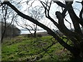 NH5649 : Beauly Firth from Shore Road by Alan Reid