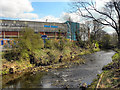 SK3390 : River Don, Hillsborough Stadium by David Dixon