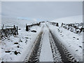 SD8074 : Lane to High Birkwith on a snowy morning by John S Turner