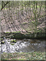 SK3089 : Steep south bank of the River Loxley by Robin Stott