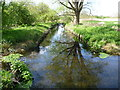 TQ2668 : Branch of the River Wandle in Morden Hall Park by Ian Yarham