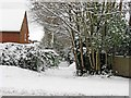 TQ0049 : Cross Lanes in the snow, Guildford by L S Wilson