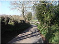 SP0207 : Dark Lane looking down towards North Cerney by Terry Jacombs