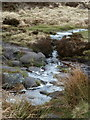 SK2676 : A little stream exiting Big Moor by Andrew Hill