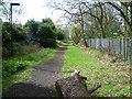 TQ4374 : Gravel Pit Lane approaching Bexley Road by Marathon