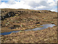 NG4234 : Bog on the moor by Richard Dorrell