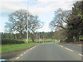 SJ5468 : A556 approaching A54 junction by John Firth