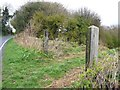 NZ1459 : Disused gateposts, Ashtree Lane by Christine Johnstone