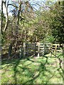 NY9463 : Kissing gate into Gallowsbank Wood by Oliver Dixon