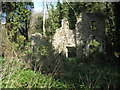 SY3090 : Ruined cottage at Whitlands by Philip Halling