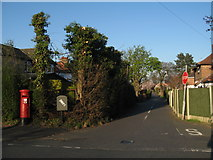 SJ3777 : Red Lion Lane by Sue Adair