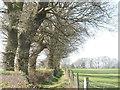 SU9694 : On the Chiltern Way near to Brentford Grange Farm by Peter