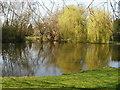 SU9495 : Coleshill duck pond, Buckinghamshire by Peter S