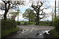 SJ8060 : Congleton Road/Cross Lane junction Overton Green Lane by Peter Turner