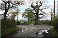 SJ8060 : Congleton Road/Cross Lane junction Overton Green Lane by Peter Turner