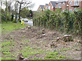 SK5136 : Tree stumps at Bramcote Lane by Alan Murray-Rust
