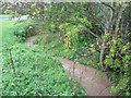 SP2979 : The brook near Nod Rise bridge by E Gammie